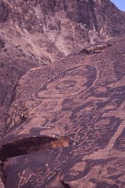 Petroglyphs near Chilas