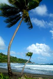 Northern Dominica beaches