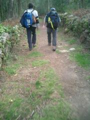Pilgrims in the Camino