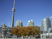 The Harbourfront