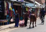 Downtown Trincomalee's Main Street