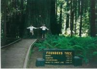 Founders tree