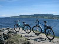 Cycling at the Trondheimsfjord